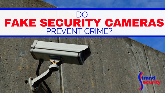 DO fake security cameras prevent crime?